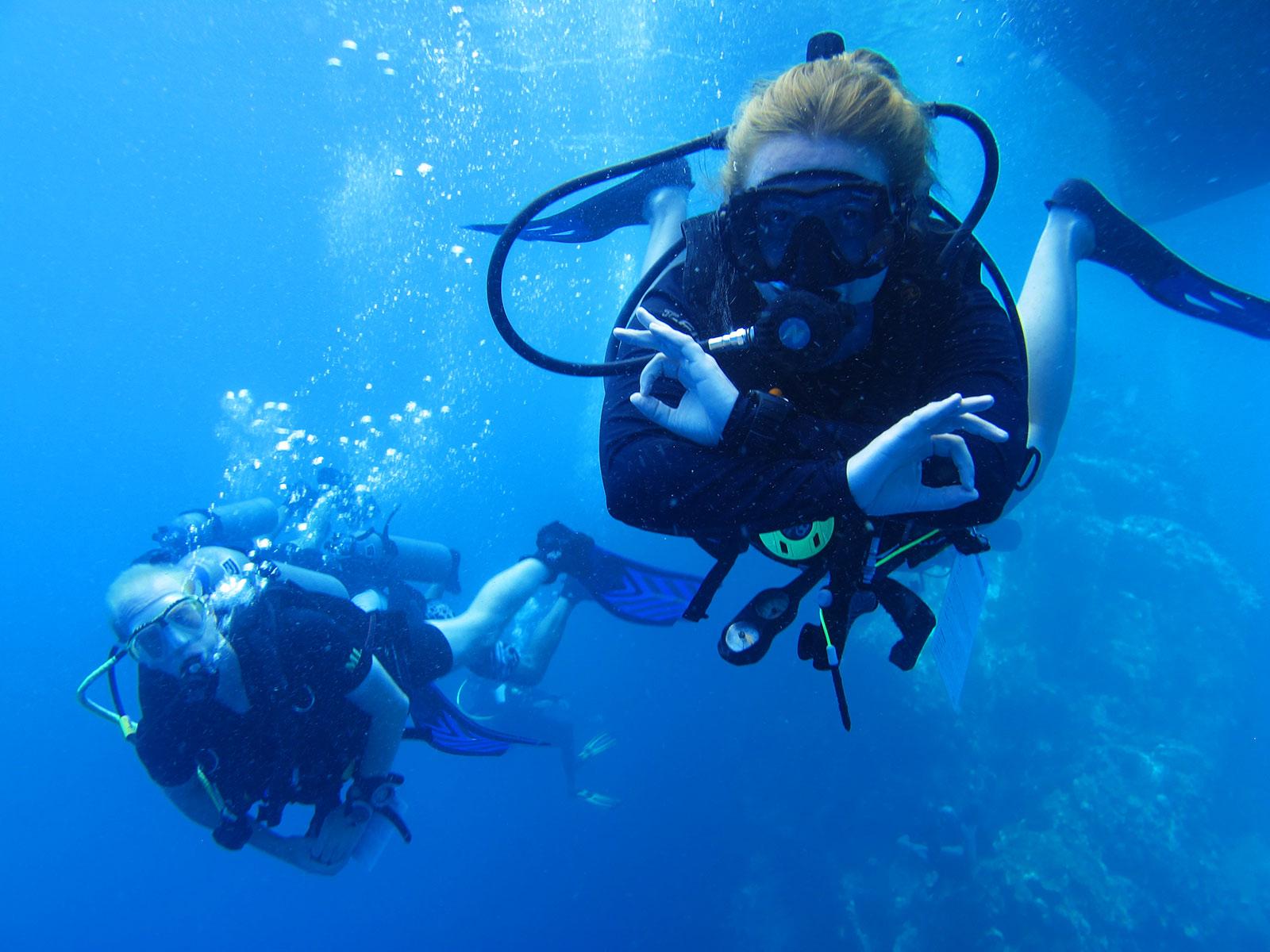 Diving koh tao in thailand dive school dive courses fun diving - Dive in koh tao ...